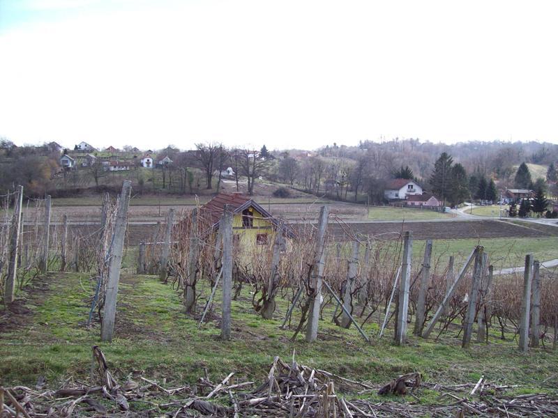 Starigrad, klijet, voćnjak i vinograd